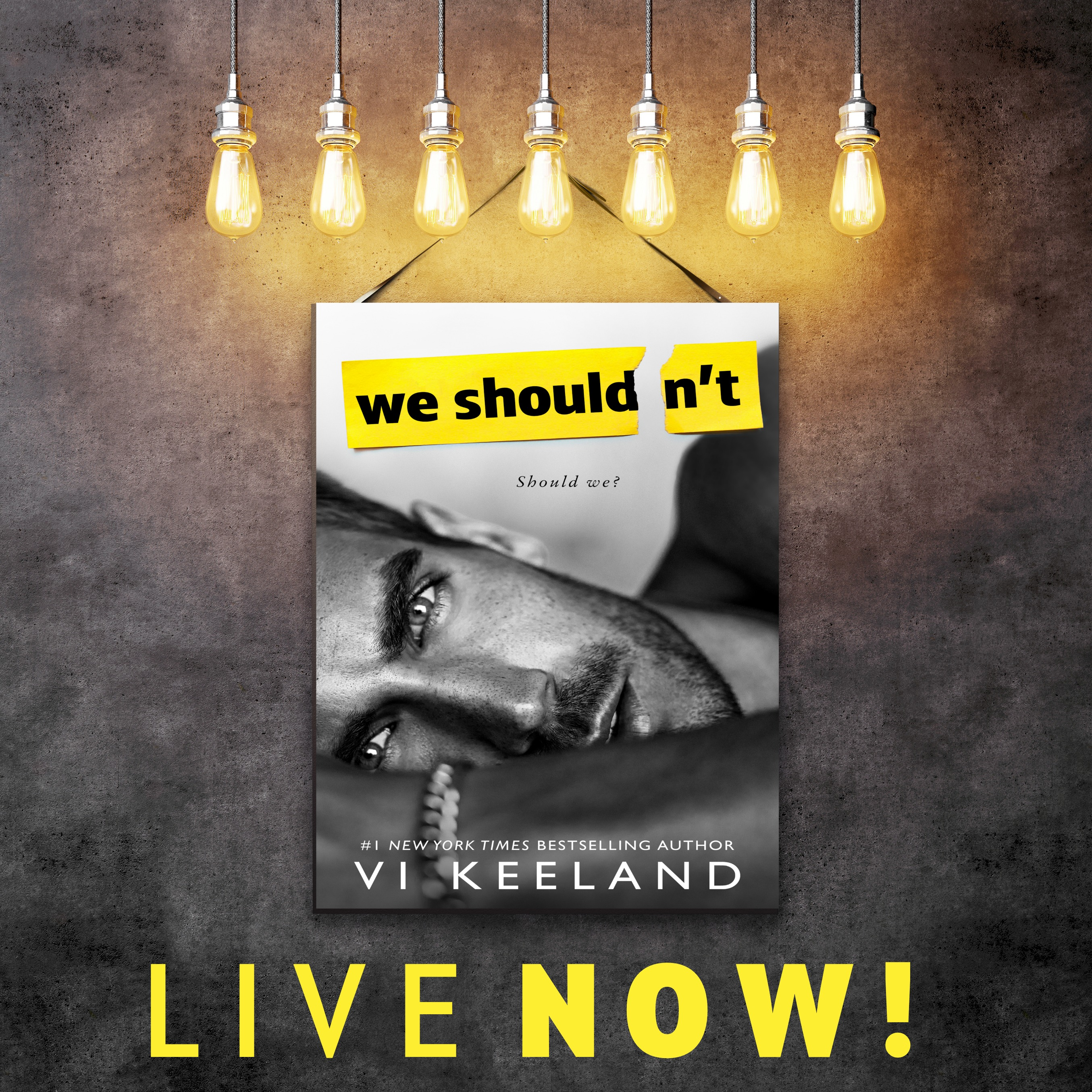 Release Blitz + My Book Review WE SHOULDN'T by Vi Keeland ...
